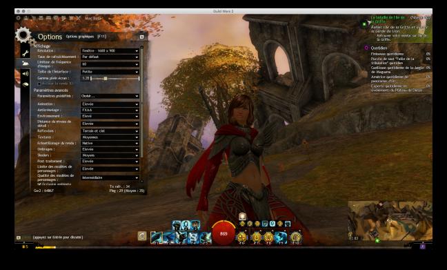 Sous Guild Wars 2