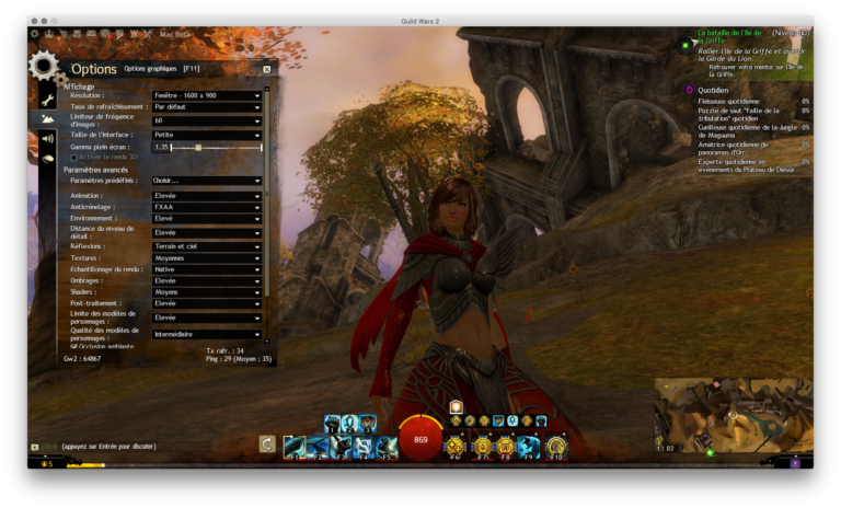 Sous Guild Wars 2